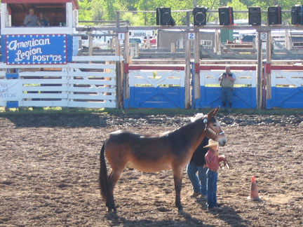 Fri-YouthShowmanship01.jpg