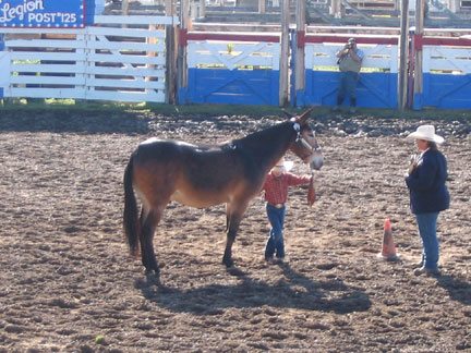 Fri-YouthShowmanship02.jpg